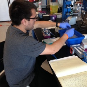 College student putting research samples on ice in research laboratory.