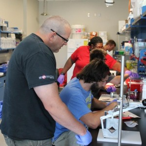 Two faculty members and three students conducting rat dissections in research laboratory.