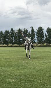 polo player riding horse and swinging mallet to hit ball