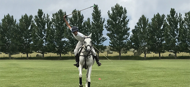 Polo Player on Horse