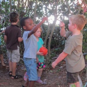 A group of four children interact and play outdoors