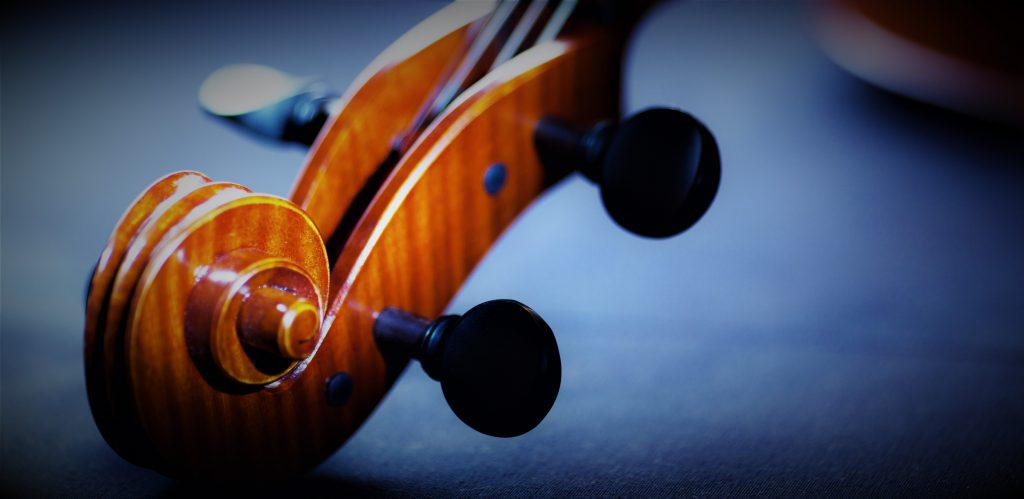 top of an orchestral string instrument