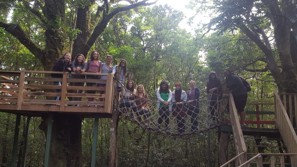 Students in forest in Costa Rica
