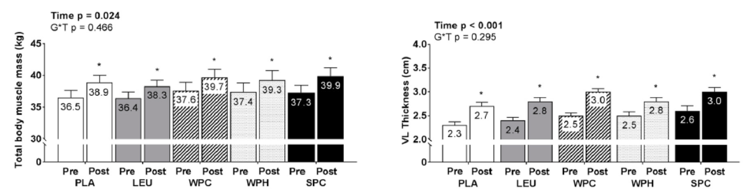 Pre/Post total body muscle mass and VL thickness data